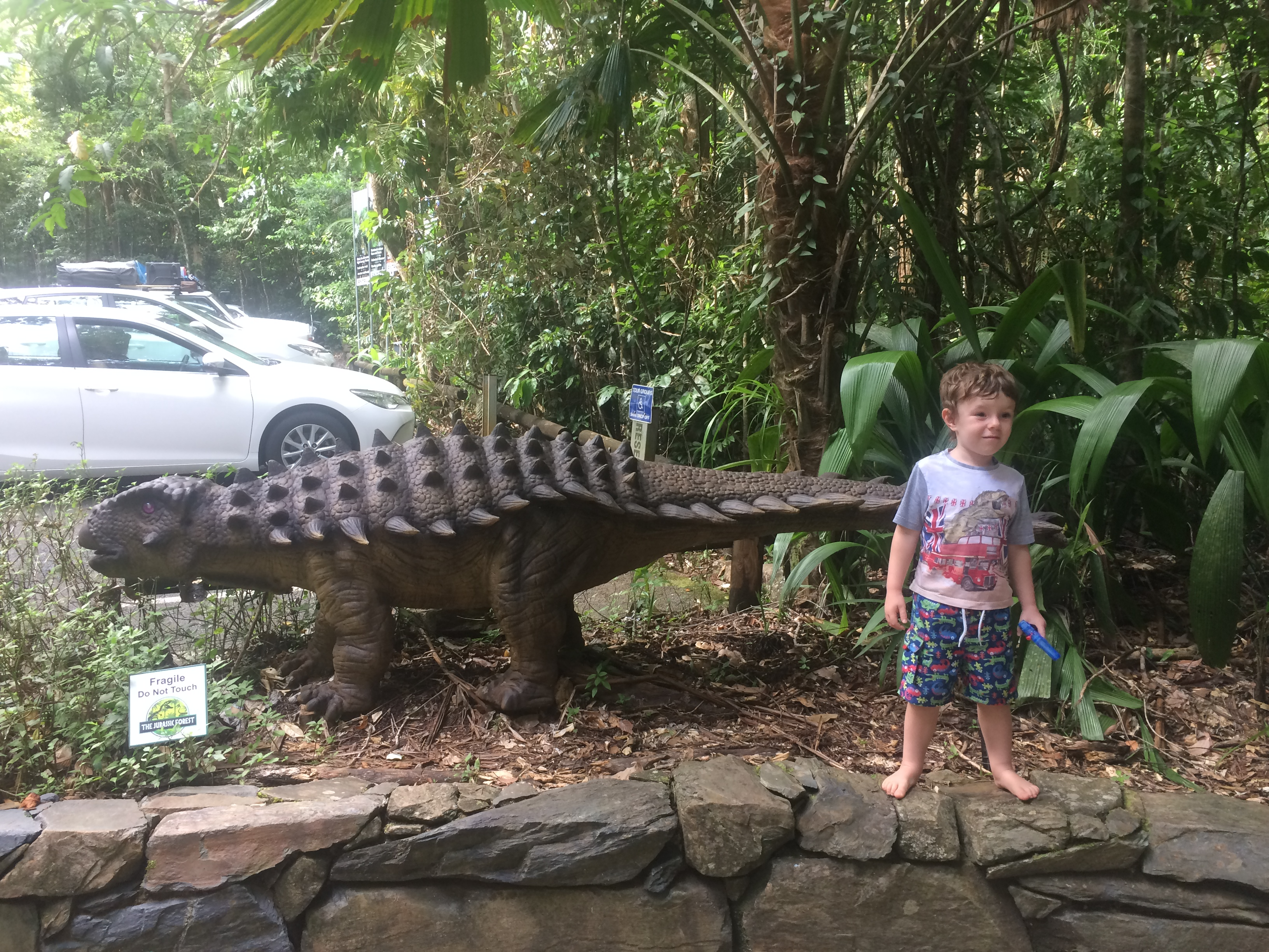 Daintree, Discovery and the Demon Duck of Doom