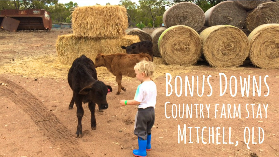Bonus Downs Farmstay – Mitchell, QLD
