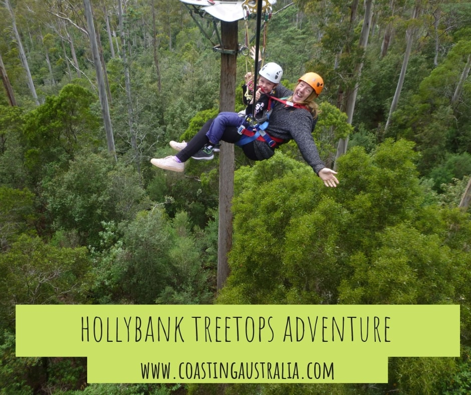 Hollybank Treetops Adventure – Family Fun in Tasmania